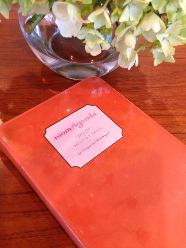 momAgenda day planner review