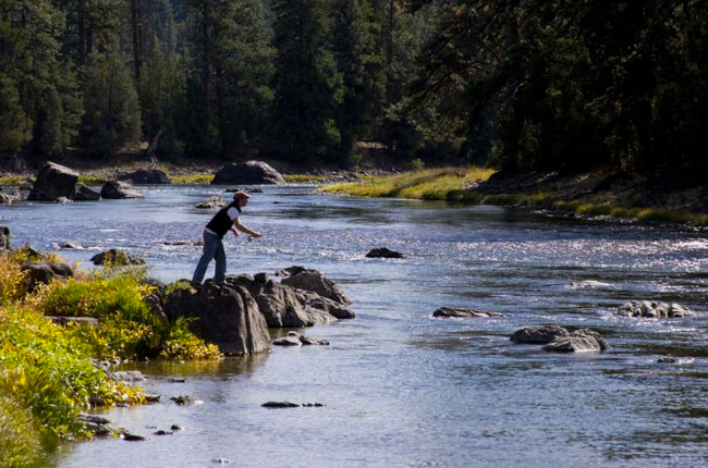 Bucket list trip to montana fly fishing at paws up for Trout farm fishing near me